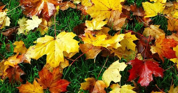 Get Your HVAC System Ready for Fall With These Tips